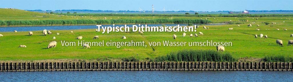 Neufeld Hafen Dithmarschen